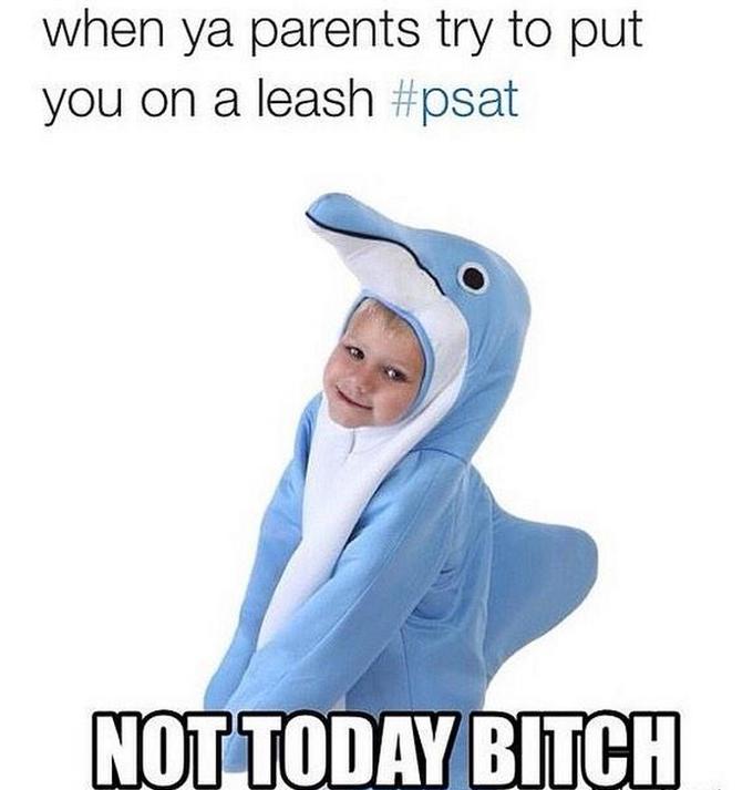 high-spirited Psat memes