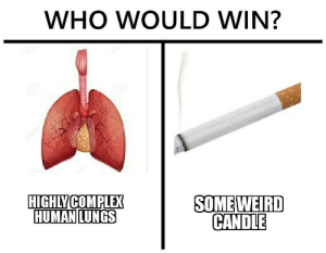 high spirited who would win memes