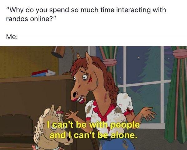 humorous BoJack Horseman memes