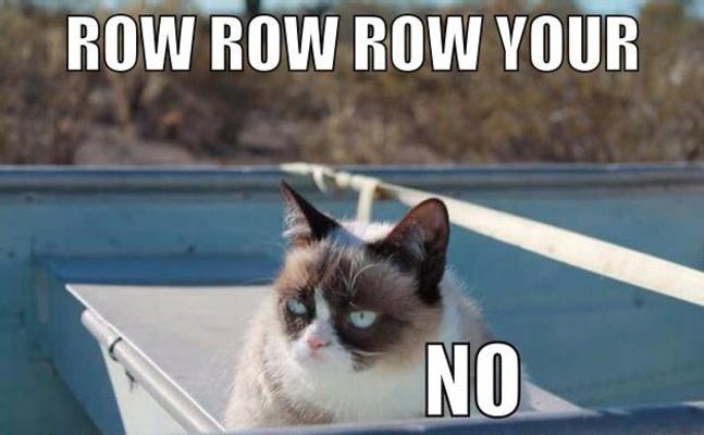 humorous Grumpy cat memes