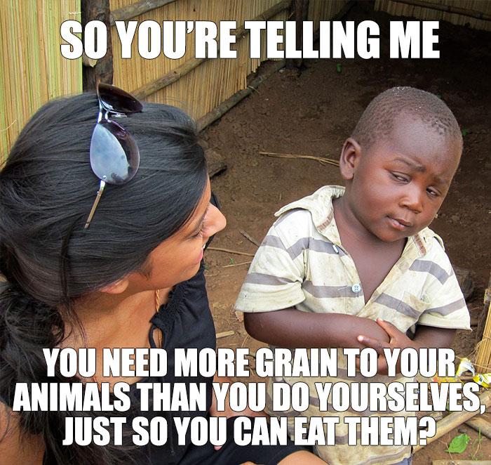humorous Vegan memes