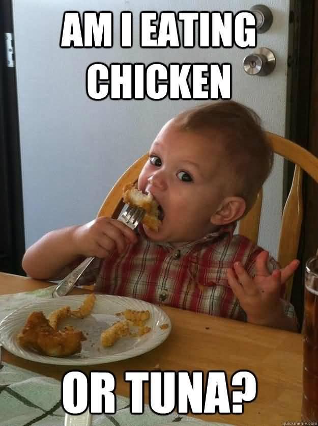 humorous chicken memes