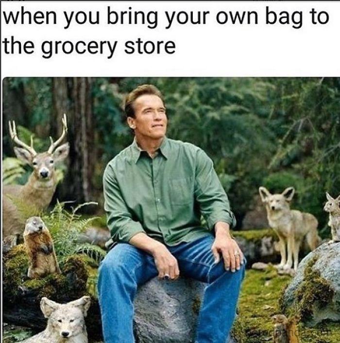 jolly Vegan memes