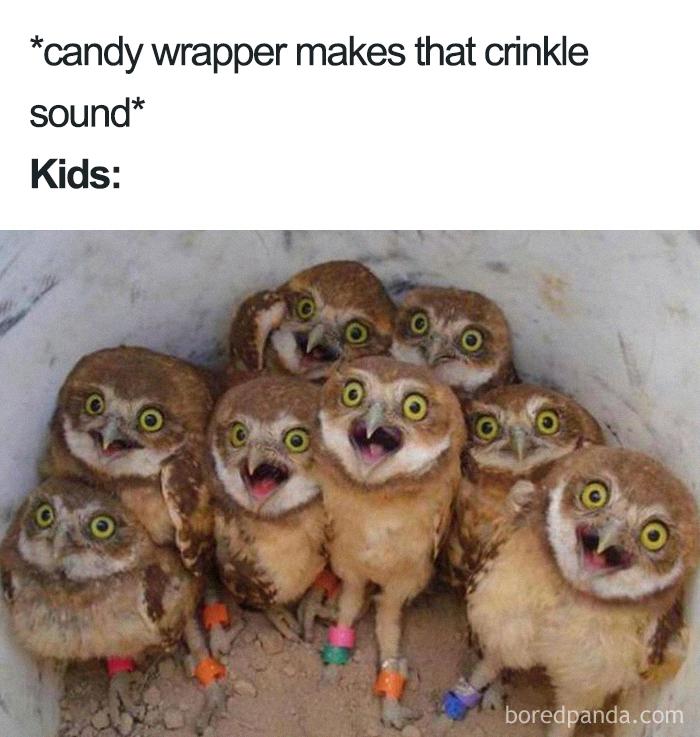 jolly mom memes