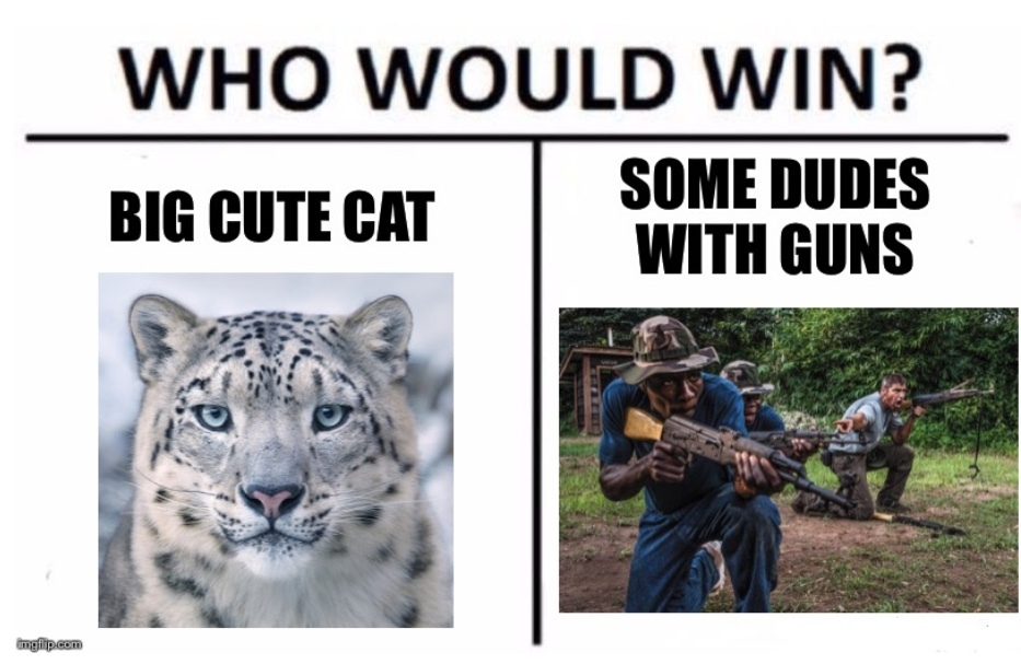 jolly who would win memes