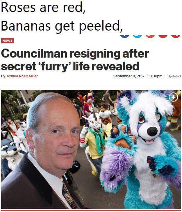 laughable Furry memes