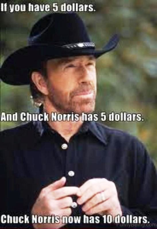 lively Chuck norris memes