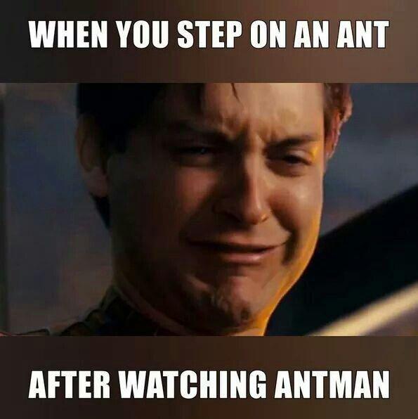 lively ant-man memes