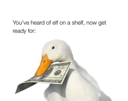 lively elf on the shelf memes