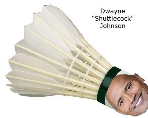 "rib-tickling Dwayne Johnson ""The Rock"" memes"