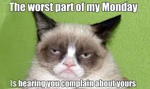 rib-tickling Grumpy cat memes