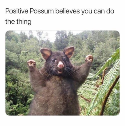 rib-tickling positive memes