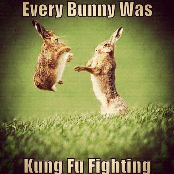 sparkling Easter memes