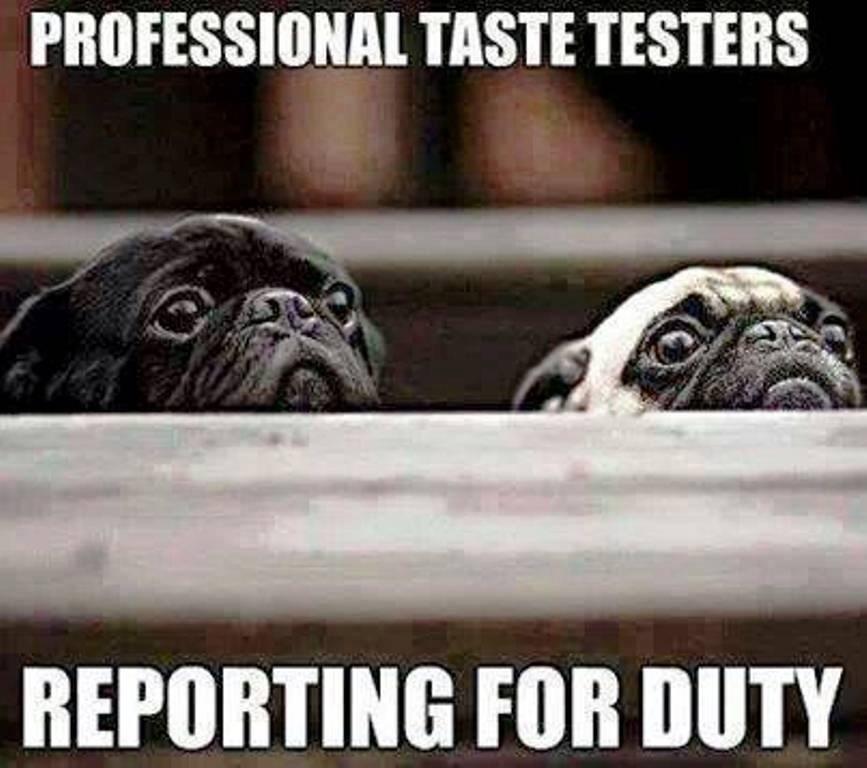 sparkling puppy memes