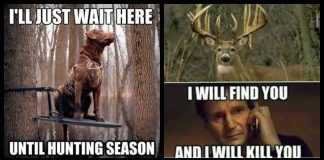 100+ Hunting Memes That Will Make You Think About Animals