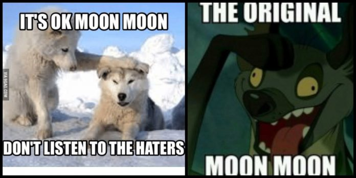 100+ Moon Moon Memes That Are So True