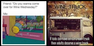 100+ Wine Memes For The Taste Buds In You