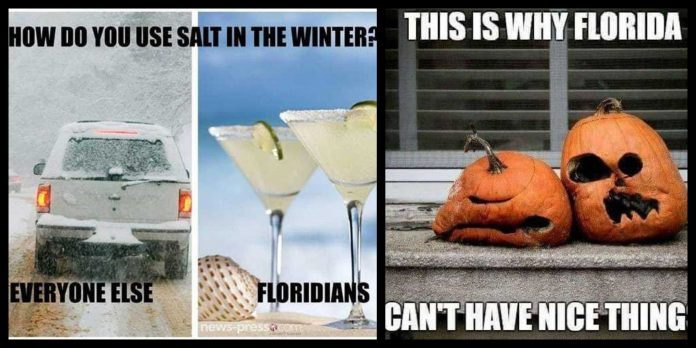 110+ Florida Memes For The Sunshine In You