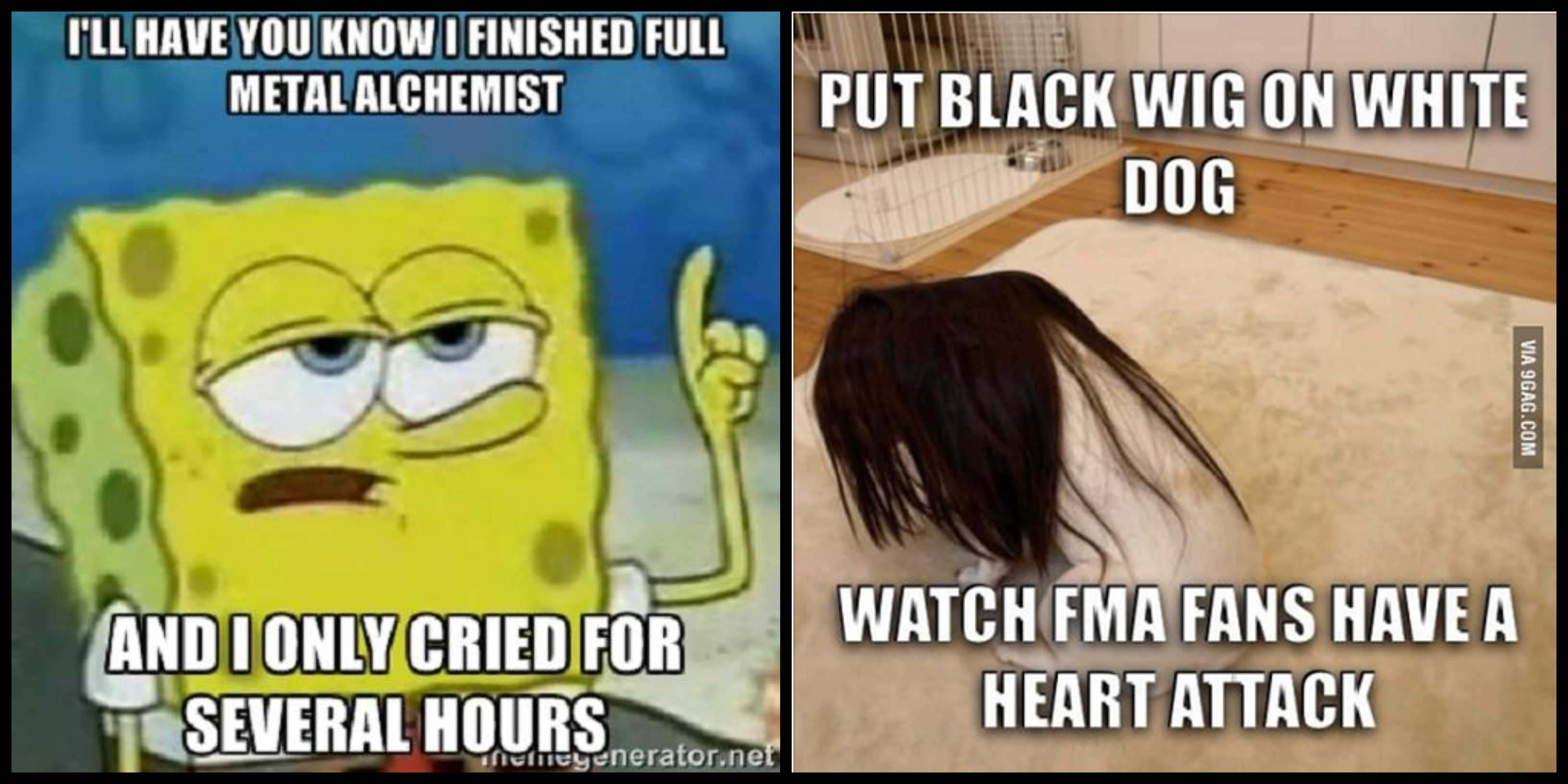 75 Fullmetal Alchemist Memes That Will Make You Laugh For Miles Together Geeks On Coffee