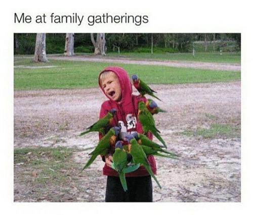 Funny family memes