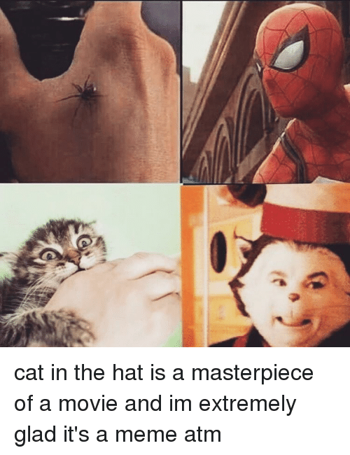 amusing cat in the hat meme