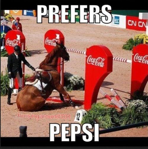 amusing horse memes