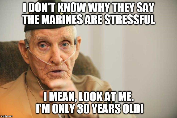 amusing marine memes