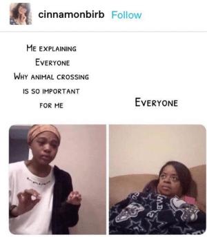 animal crossing memes (5)