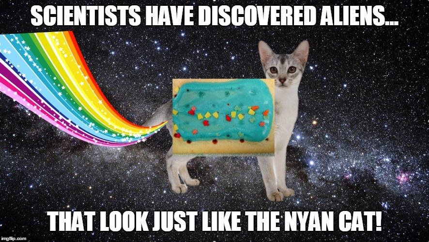 animated Nyan Cat memes