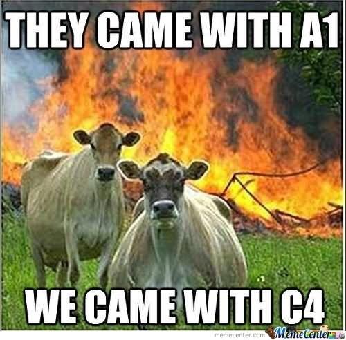 animated cow meme