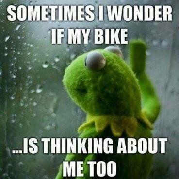 animated motorcycle memes