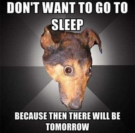 animated sleep meme
