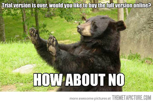 cheerful bear memes