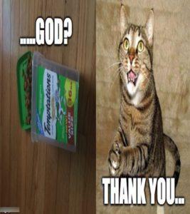 cheerful thank you meme