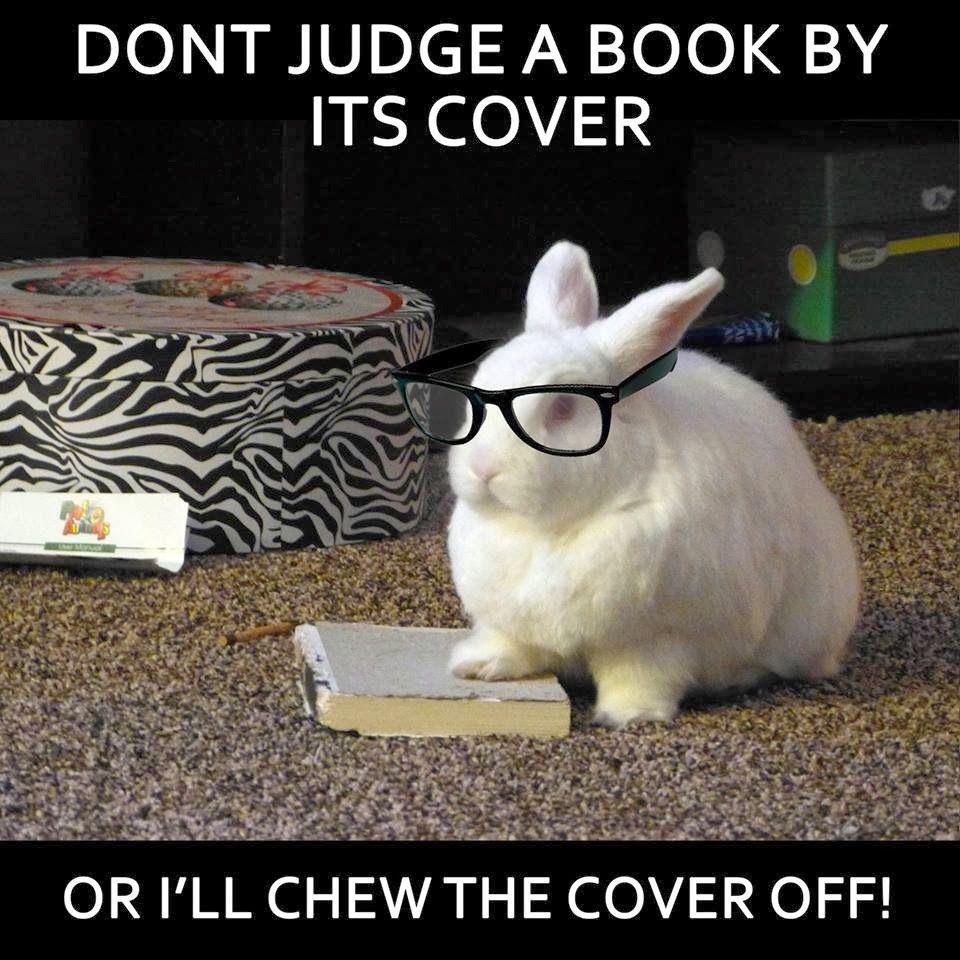 cheerfull bunny memes