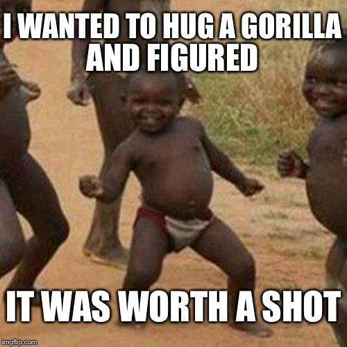 chucklesome Harambe the Gorilla memes