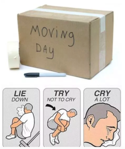 chucklesome moving memes