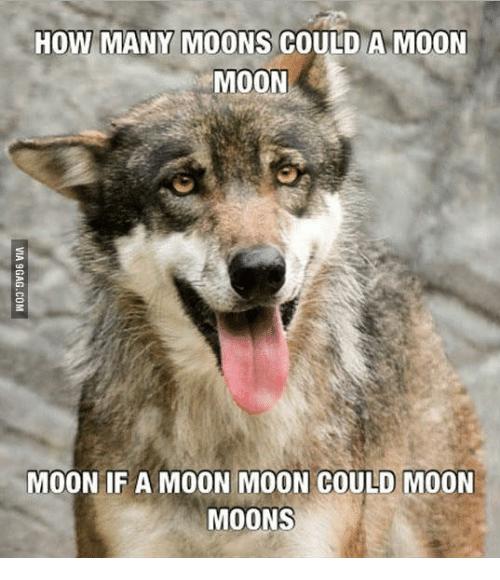 comic Moon Moon memes