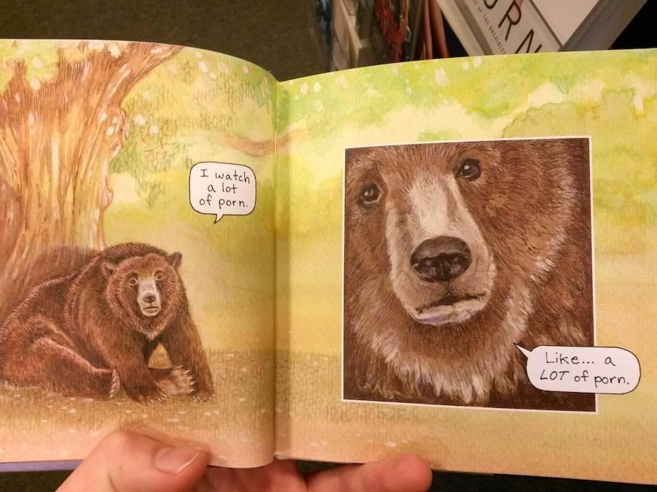 comic bear memes