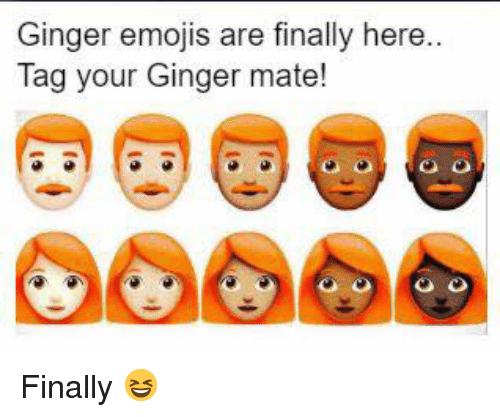 comic ginger meme
