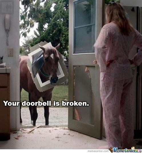 comic horse memes