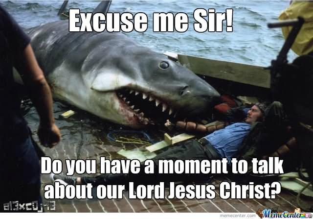 comic shark meme