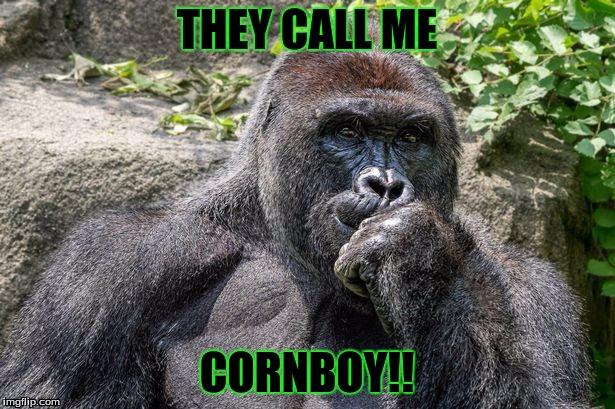 comical Harambe the Gorilla memes