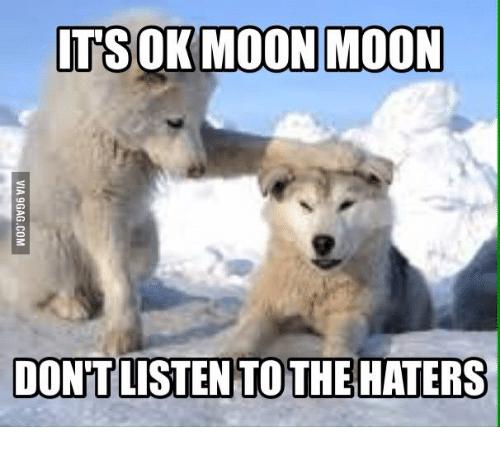 comical Moon Moon memes