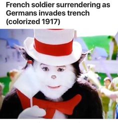comical cat in the hat meme