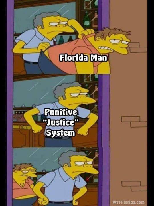 comical florida memes