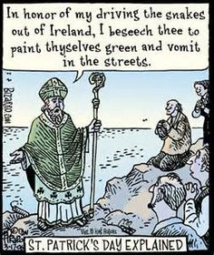 comical irish memes