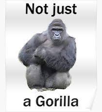 droll Harambe the Gorilla memes
