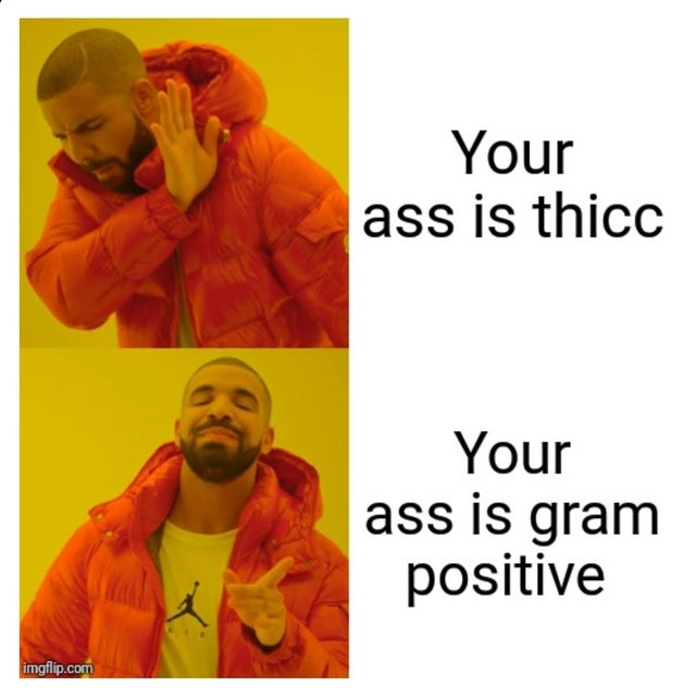 droll, biology memes