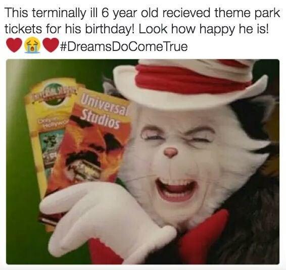 droll cat in the hat meme